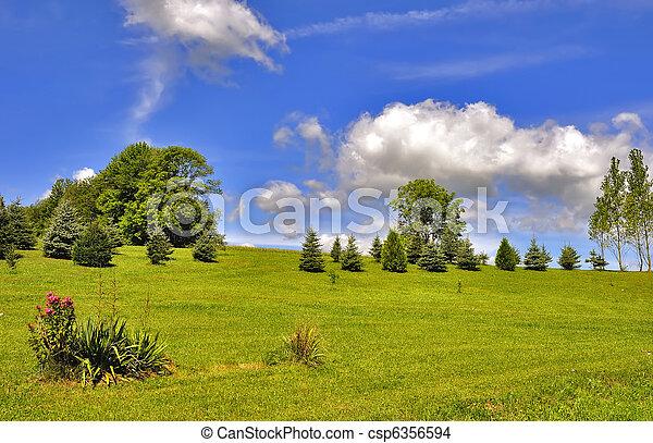 Summer Landscape - csp6356594