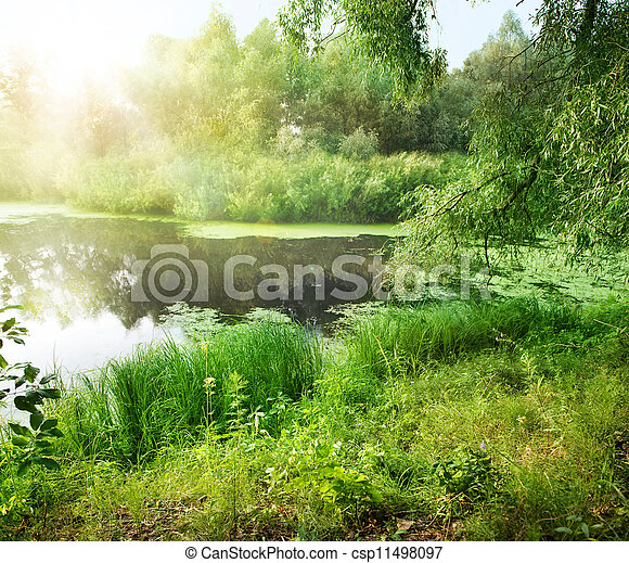 Summer Landscape With River - csp11498097