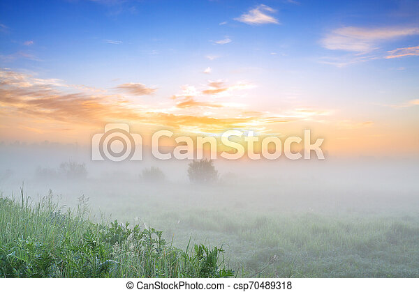 summer landscape with sunrise and fog - csp70489318