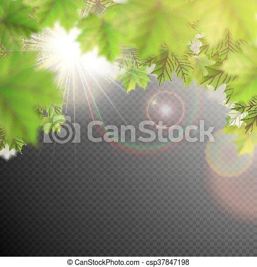 Summer Leaves Template Eps 10