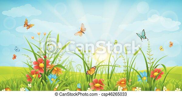 Summer meadow background - csp46265033