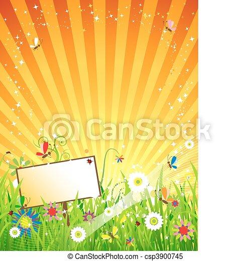 Summer meadow beautiful - csp3900745