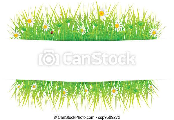 Summer meadow beautiful - csp9589272