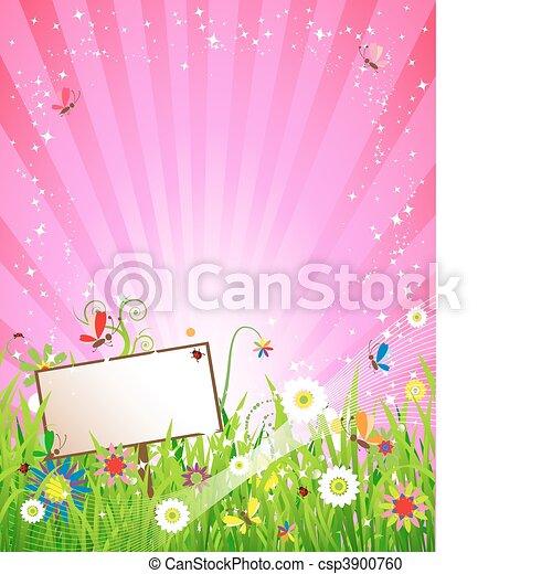 Summer meadow beautiful - csp3900760
