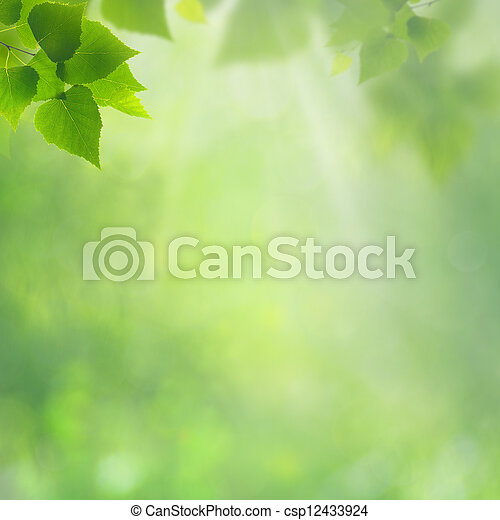 Summer natural backgrounds for your design - csp12433924
