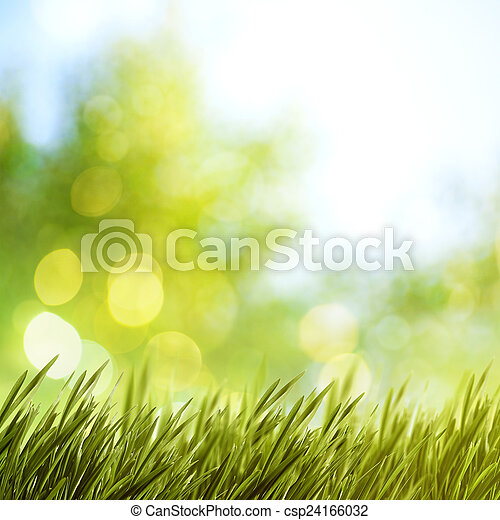 summer natural backgrounds for your design - csp24166032