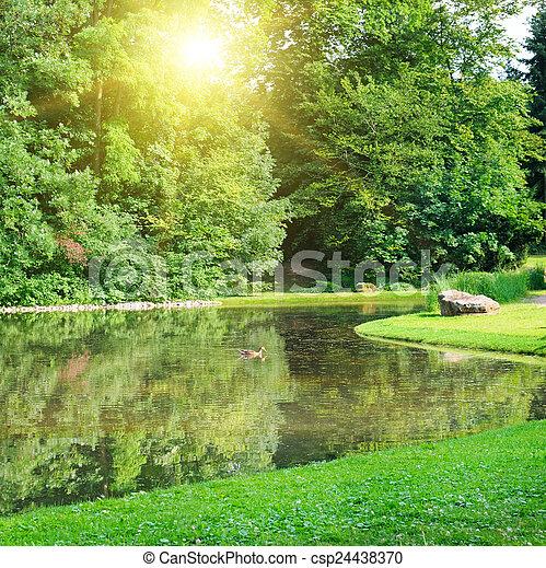 Summer park, river, sunrise - csp24438370