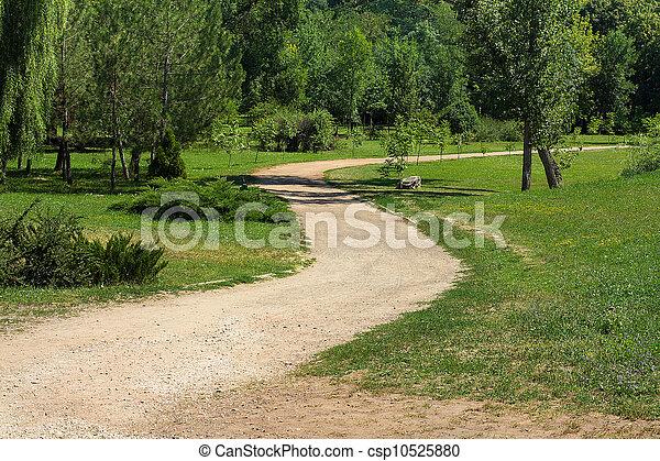 Summer park road - csp10525880