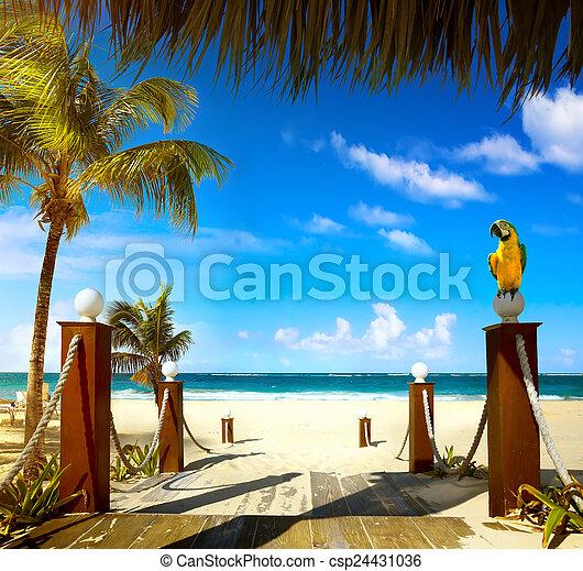 Summer resort beach - csp24431036