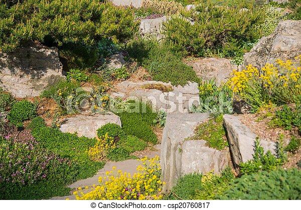 Summer Rockery Garden - csp20760817