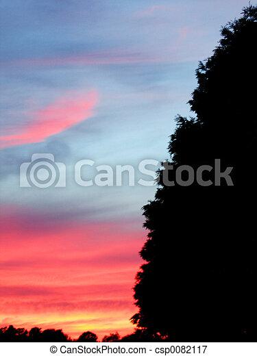 Summer Sunset - csp0082117