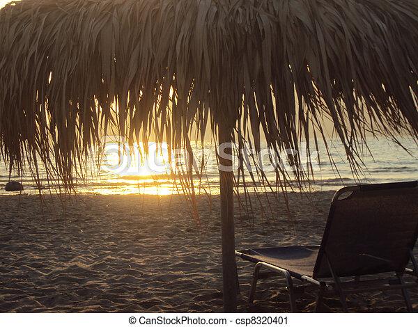 Summer sunset - csp8320401