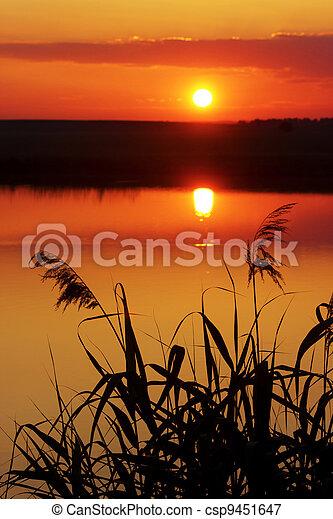 summer sunset - csp9451647