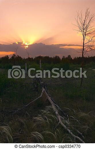 summer sunset - csp0334770
