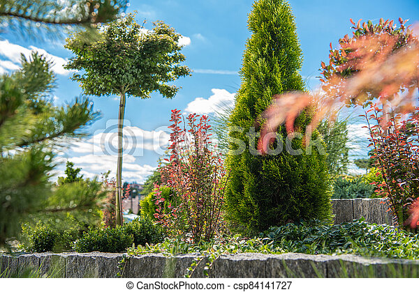 Summer Time Backyard Garden - csp84141727