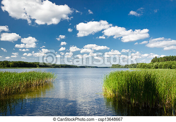 Summer view at the lake in the park - csp13648667