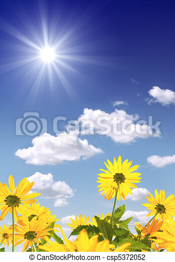 Sun and flowers - csp5372052