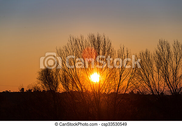Sun behind dark silhouettes of trees, with orange colored sky - csp33530549