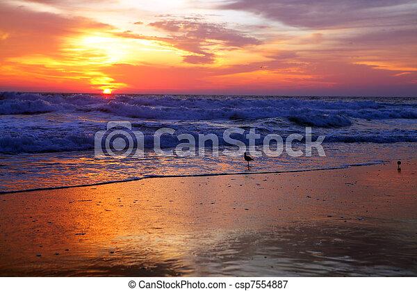 sun rise - csp7554887