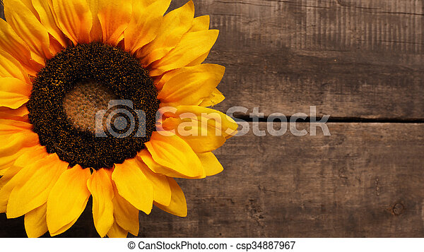 Sunflower On Wood A Wooden Background With Space For