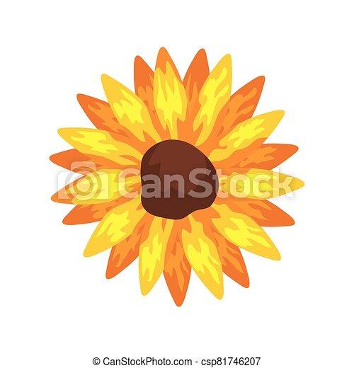 sunflower plant icon on white background - csp81746207
