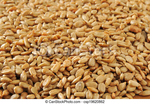 Sunflower seed backgrounds - csp19620862