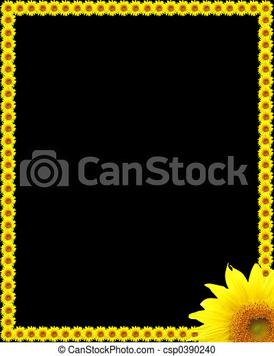 Sunflowers - csp0390240