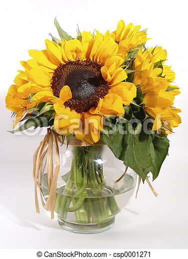 Sunflowers - csp0001271