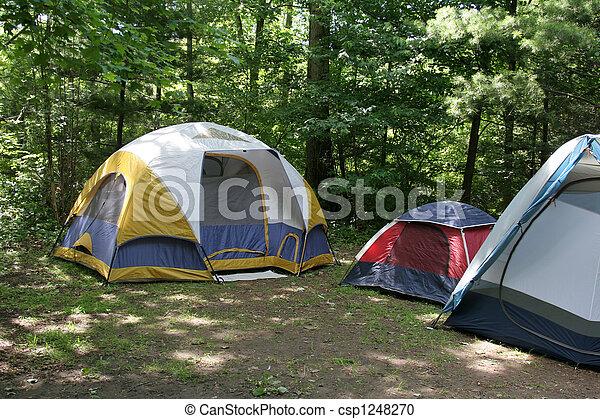 Sunlit Campsite - csp1248270