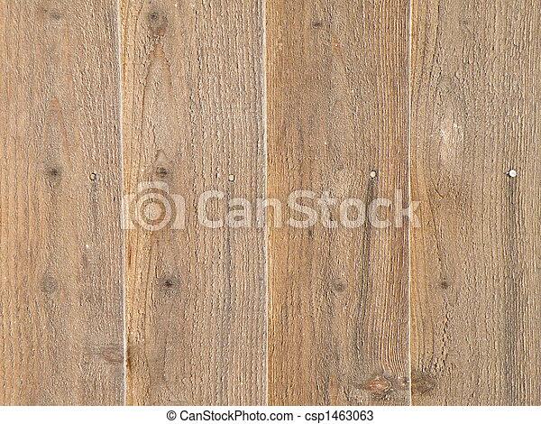 Sunlit timber - csp1463063