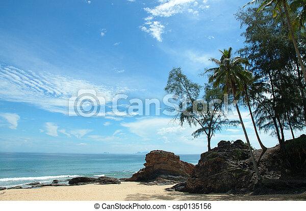 sunny beach - csp0135156