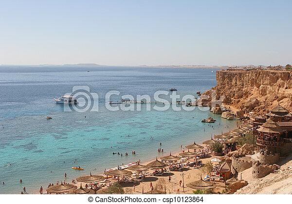 Sunny beach - csp10123864