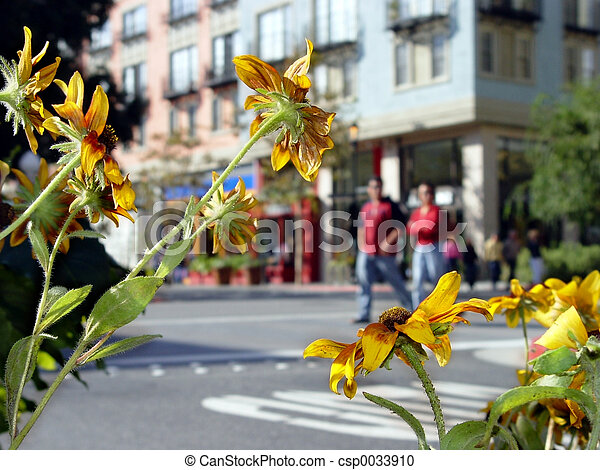 Sunny day in a city - csp0033910