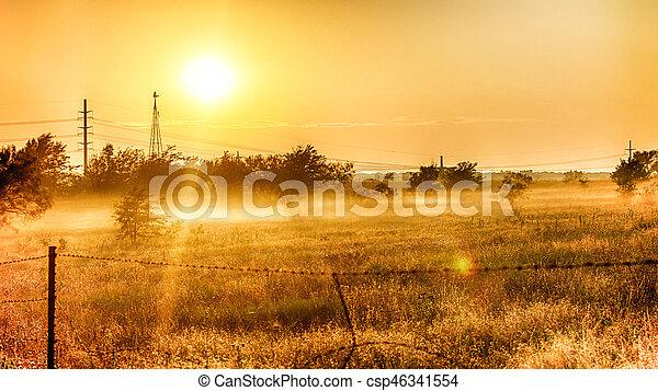 Sunny field - csp46341554