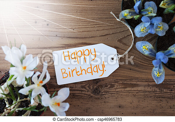 Sunny Flowers Label Text Happy Birthday Sunny Label With English