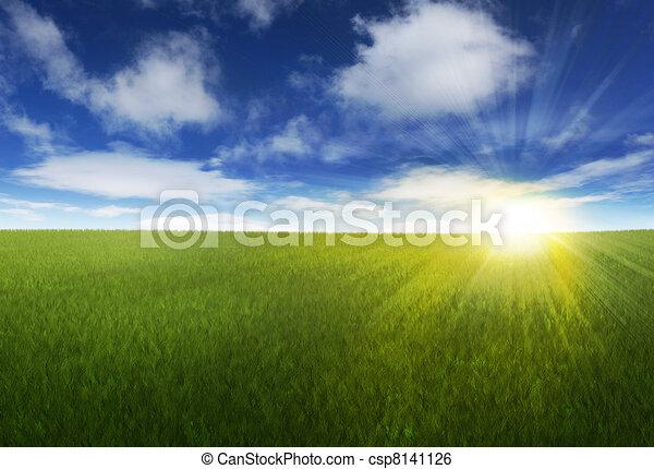Sunny sky over grassy field - csp8141126