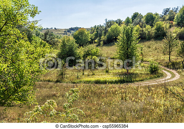 Sunny summer day in forest with clear sky and country road - csp55965384