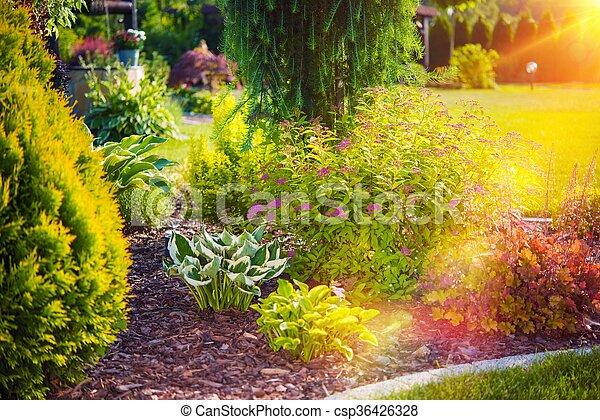 Sunny Summer Garden - csp36426328