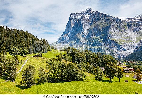 Sunny view of alpine Eiger village. Location place Swiss alps, Grindelwald valley. - csp78807502
