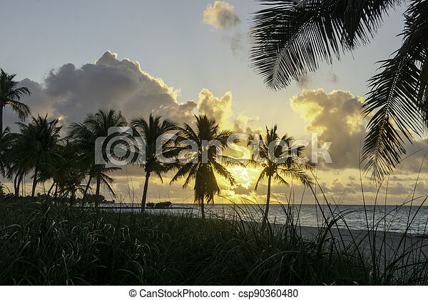 Sunrise at Smathers Beach in Key West. - csp90360480