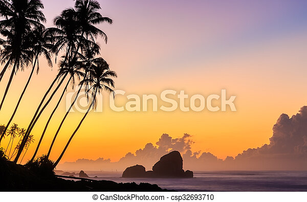 Sunrise at the beach with palm trees - csp32693710