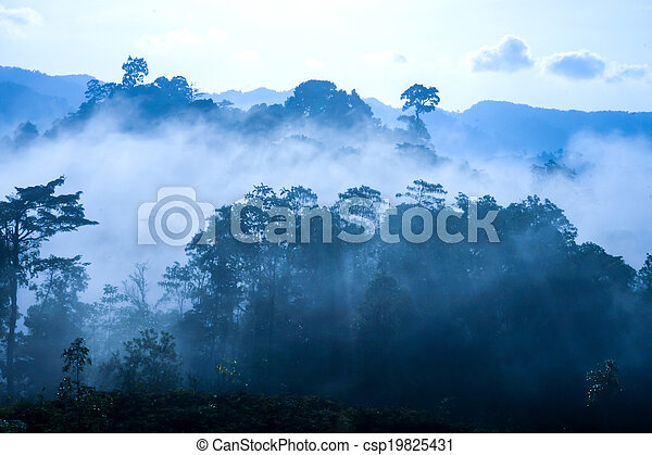 Sunrise at the fog mountains in the summer. - csp19825431