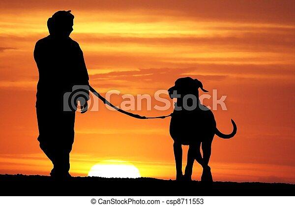 Sunrise Dog Walk - csp8711553