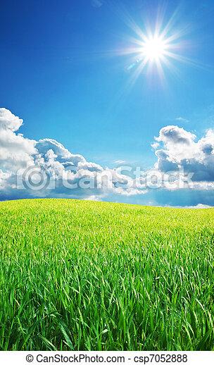 Sunrise in grean meadow - csp7052888