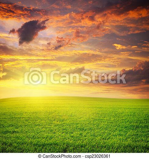 Sunrise in grean meadow. - csp23026361