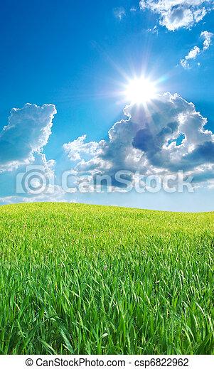 Sunrise in grean meadow - csp6822962