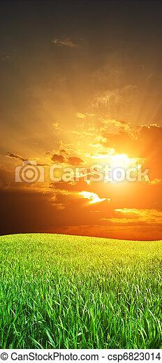 Sunrise in grean meadow - csp6823014