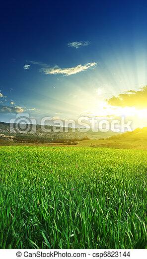 Sunrise in grean meadow - csp6823144