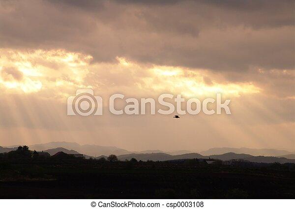 Sunrise & mist - csp0003108