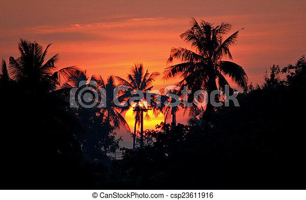 Sunrise - csp23611916